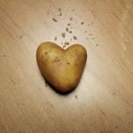 potato-203899_1280