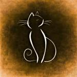 cat-859019_1280