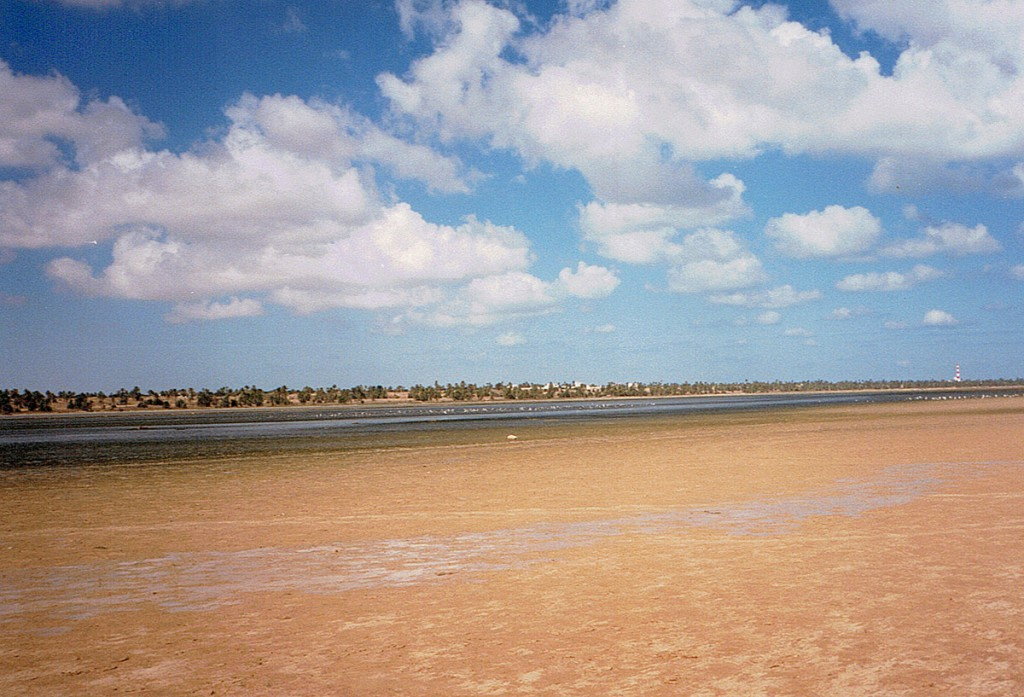 Widok laguny po odpływie