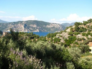 Kreta widok ogólny