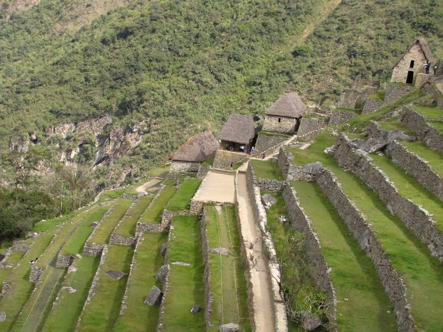 Pola tarasowe w Machu Picchu