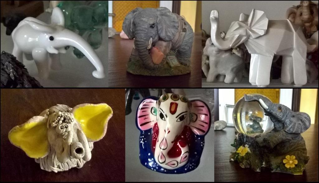 Różne słonie, różniste