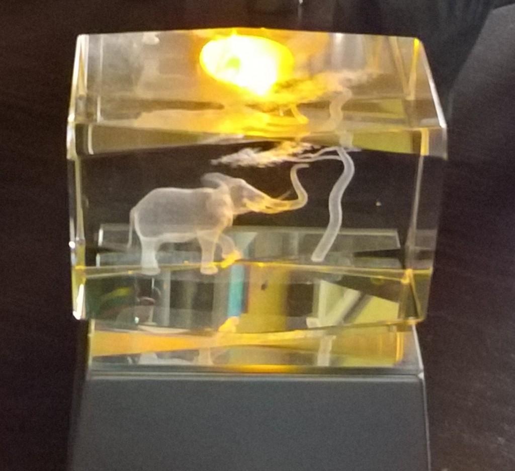 Słoń ryty w pleksi, podświetlany