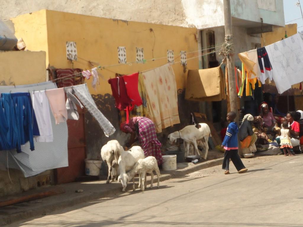 Ulice Dakaru - pranie