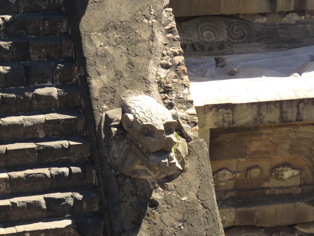 Zbliżenie głowy Pierzastego Węża