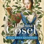 HRABINA COSEL, J.I. KRASZEWSKI - recenzja