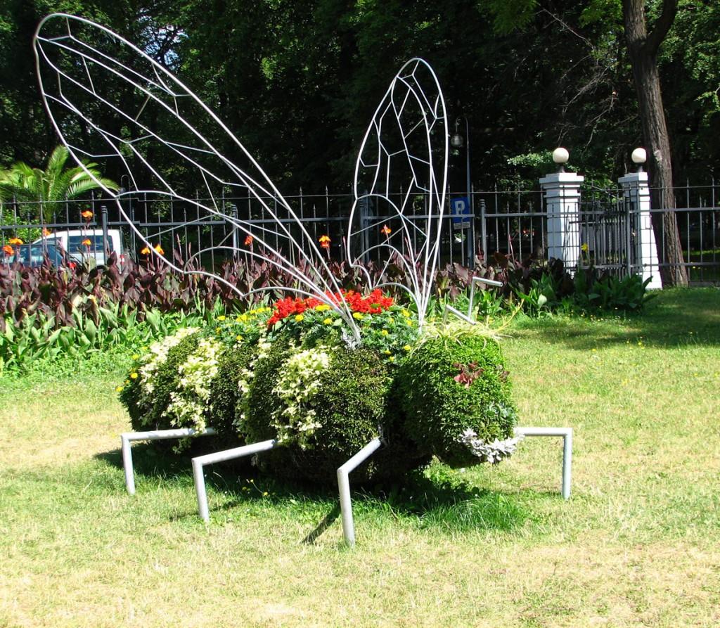 pszczoła w Parku Chopina