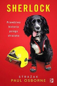 """PSI DETEKTYW – recenzja książki """"Sherlock. Prawdziwa historia psiego strażaka"""" Paula Osborne'a"""