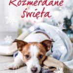 """SZPIEG W KSIĘGARNI: """"Rozmerdane święta"""" Agnieszka Olejnik – recenzja powieści"""