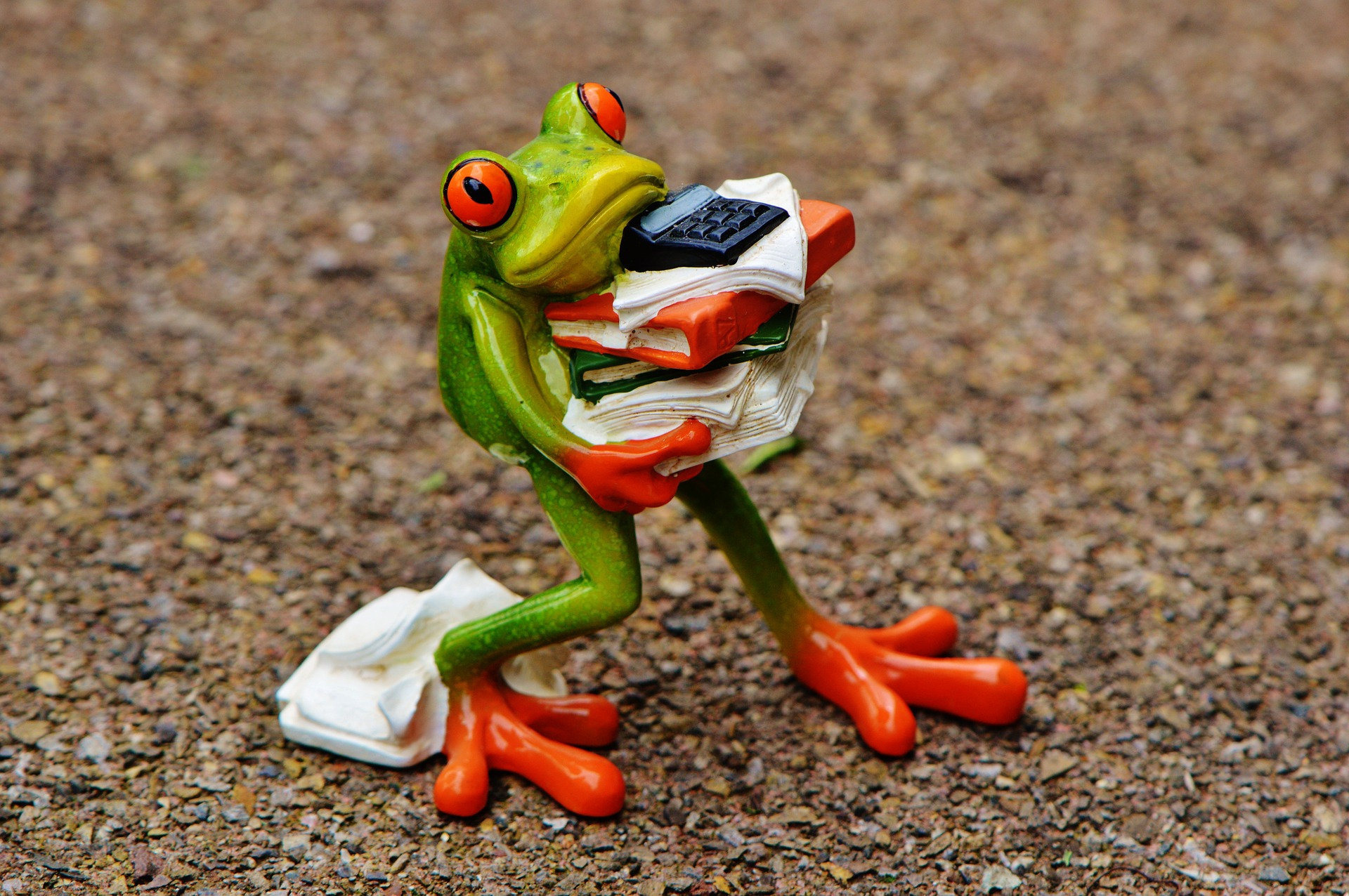 """A DZISIAJ NAPISZĘ WAM…– autorski cykl pisarki Iwony Banach, cz. 12 - """"Jak zjeść recenzyjną żabę?"""""""