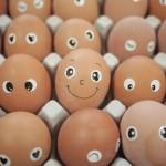 """SŁÓW KILKA WRÓBLA ĆWIRKA: """"Jak błyskawicznie obrać jajko na twardo?"""""""
